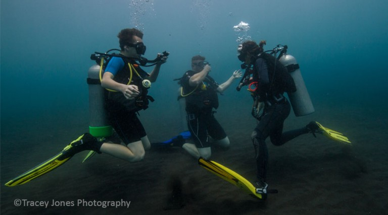 OpenWater-DiveCourse-BaliDiversity