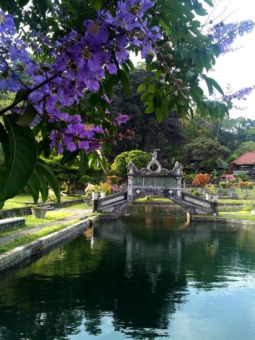 tirta-gangga-bridge-pond-holy-bath-amed-balidiversity