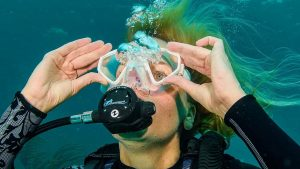 Clear your ask underwater as you learnt in your PADI Open Water Course to defog it