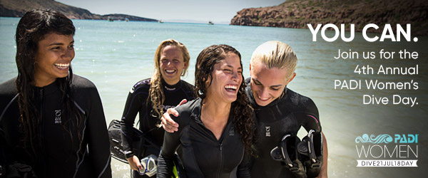 Get a special spa treatment for all courses booked and 1h massage for all fun dives