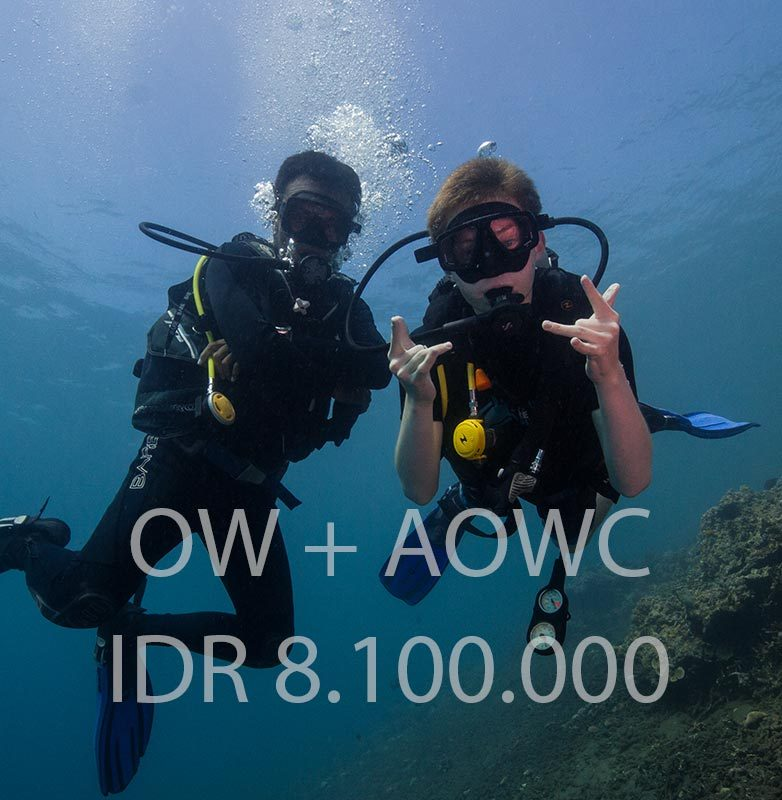 ow-aow-pack-dive-plus-package-diving-courses-padi-bali-diversity