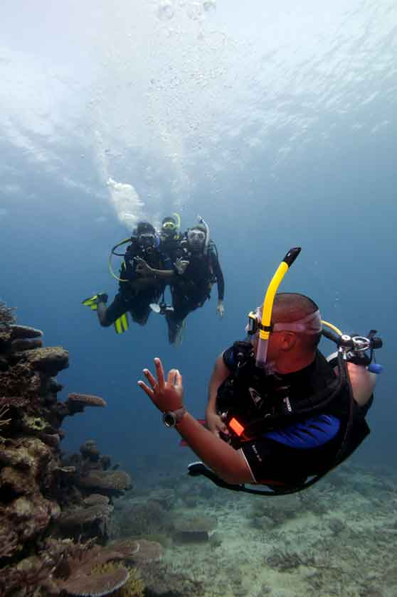 Get your Dream Job by signing up for the PADI Assistant Instructor Course