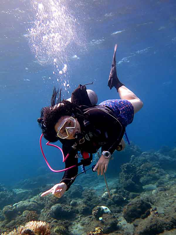 Control, lead, supervise, teach... Learn your first step towards becoming a PADI Instructor with the PADI Assistant Instructor Course.