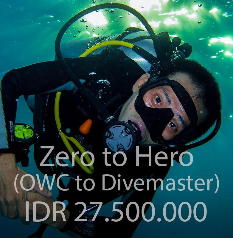 zero-to-hero-pack-course-diving-package-open-water-advanced-efr-rescue-divemaster-internship-training-bali-diversity